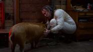 """Weltschmerz und Tragik: """"Pig"""""""